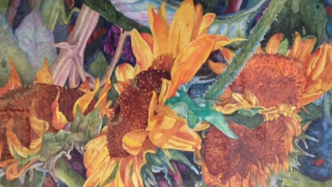 Sunflowers by Dennis Pendleton